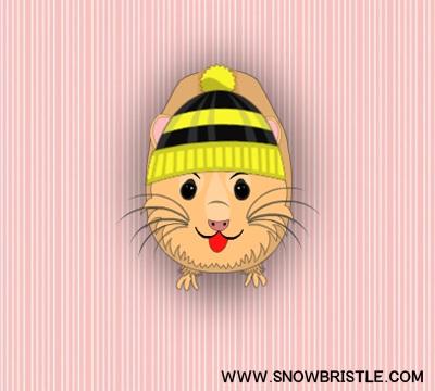 make a hamster