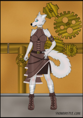 steampunk dress up